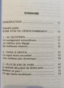 """Sommaire de """"L'art de l'essentiel"""", D. Loreau"""